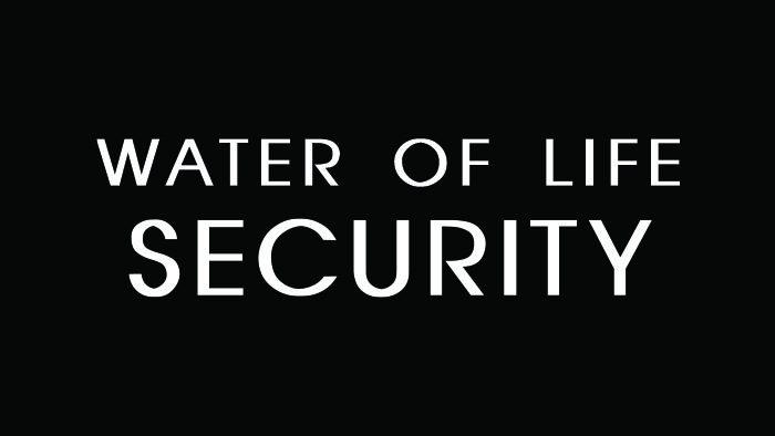 security_700x394
